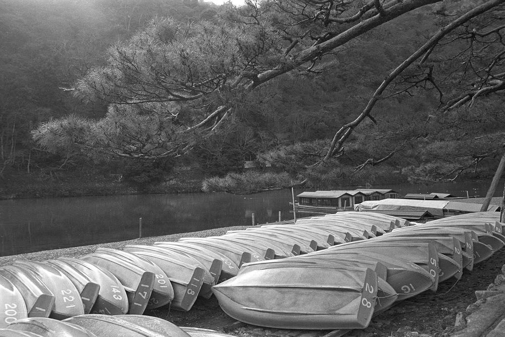 LiehSugai_Travel_Japan_12.jpg