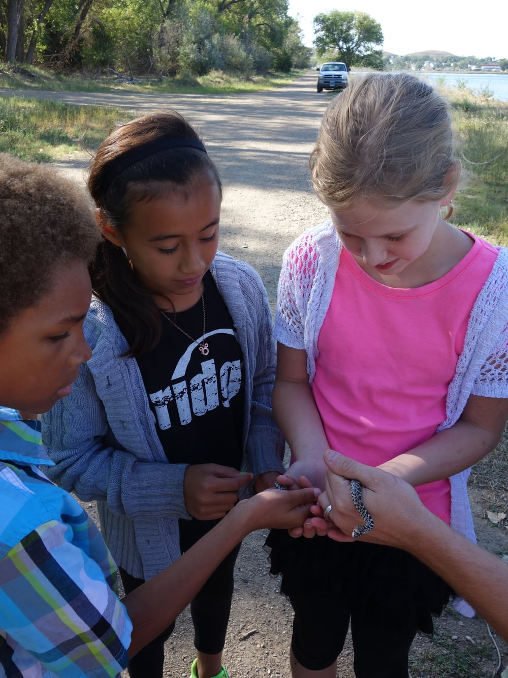Fourth grade students connect to the river, and animals that they find there, like this bull snake, become the teachers.