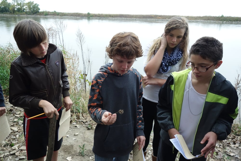 Seventh graders explore the riparian zone looking for plants and animals adapted to living near water.