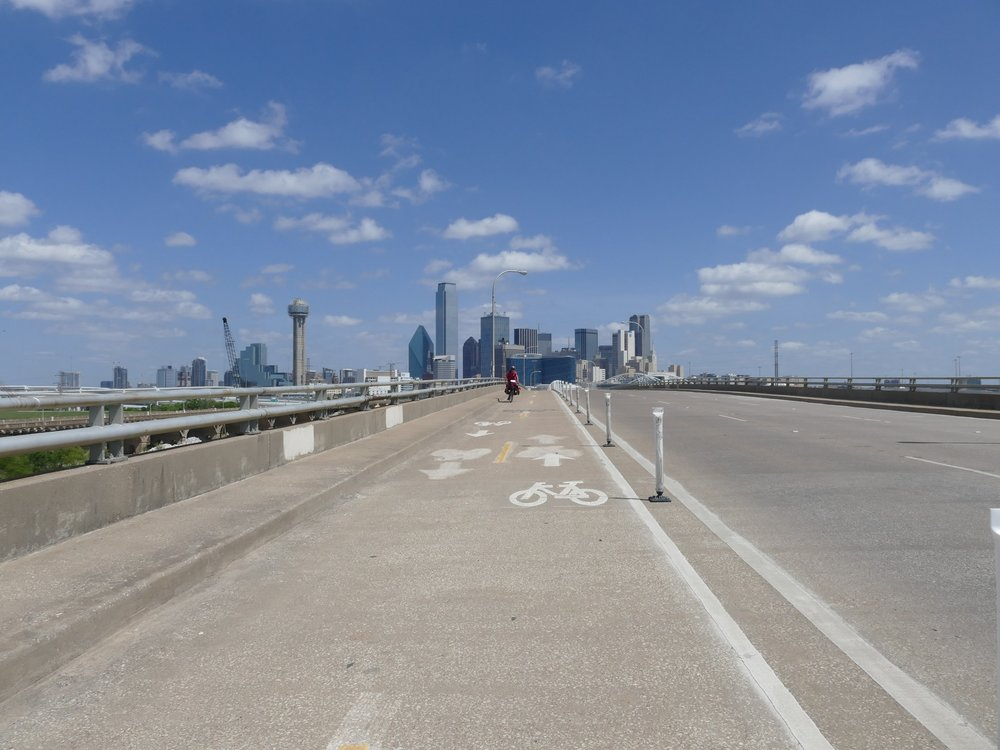 So I biked to Dallas and think it is so cool that I've connected the overwintering grounds to the Dallas skyline.