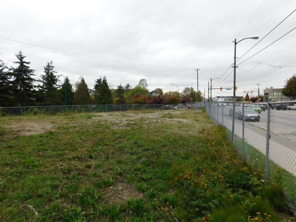 community_garden_vacant_grow_vancouver-0030.JPG