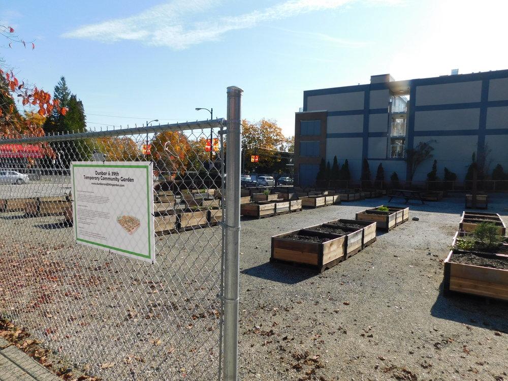 Dunbar_40th_Vancouver_Community_Garden_Builders-0002.JPG