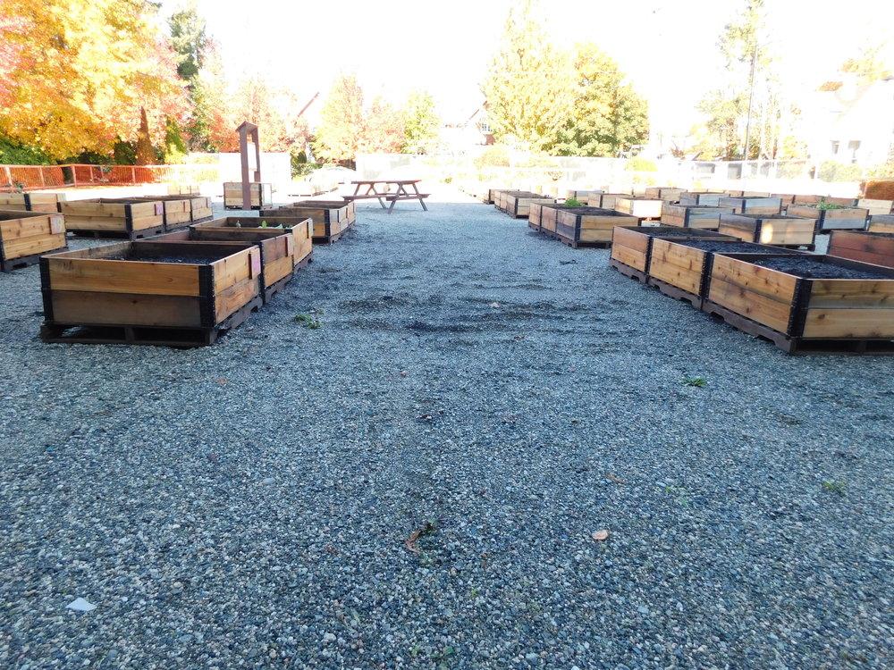 Dunbar_40th_Vancouver_Community_Garden_Builders-0006.JPG