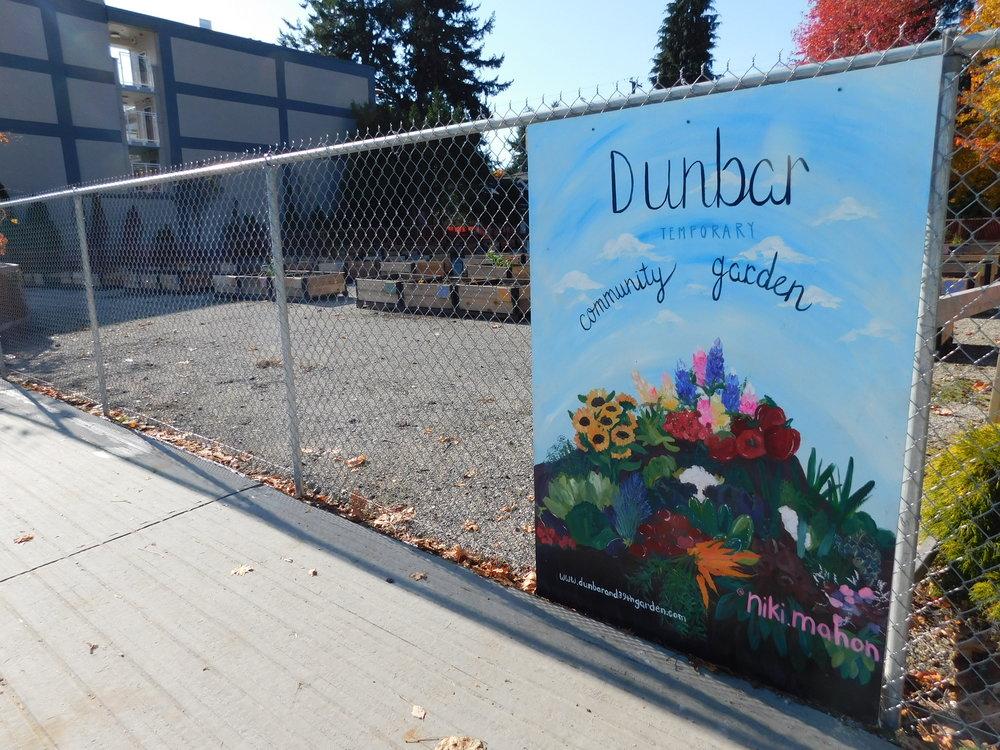 Dunbar_40th_Vancouver_Community_Garden_Builders-0017.JPG