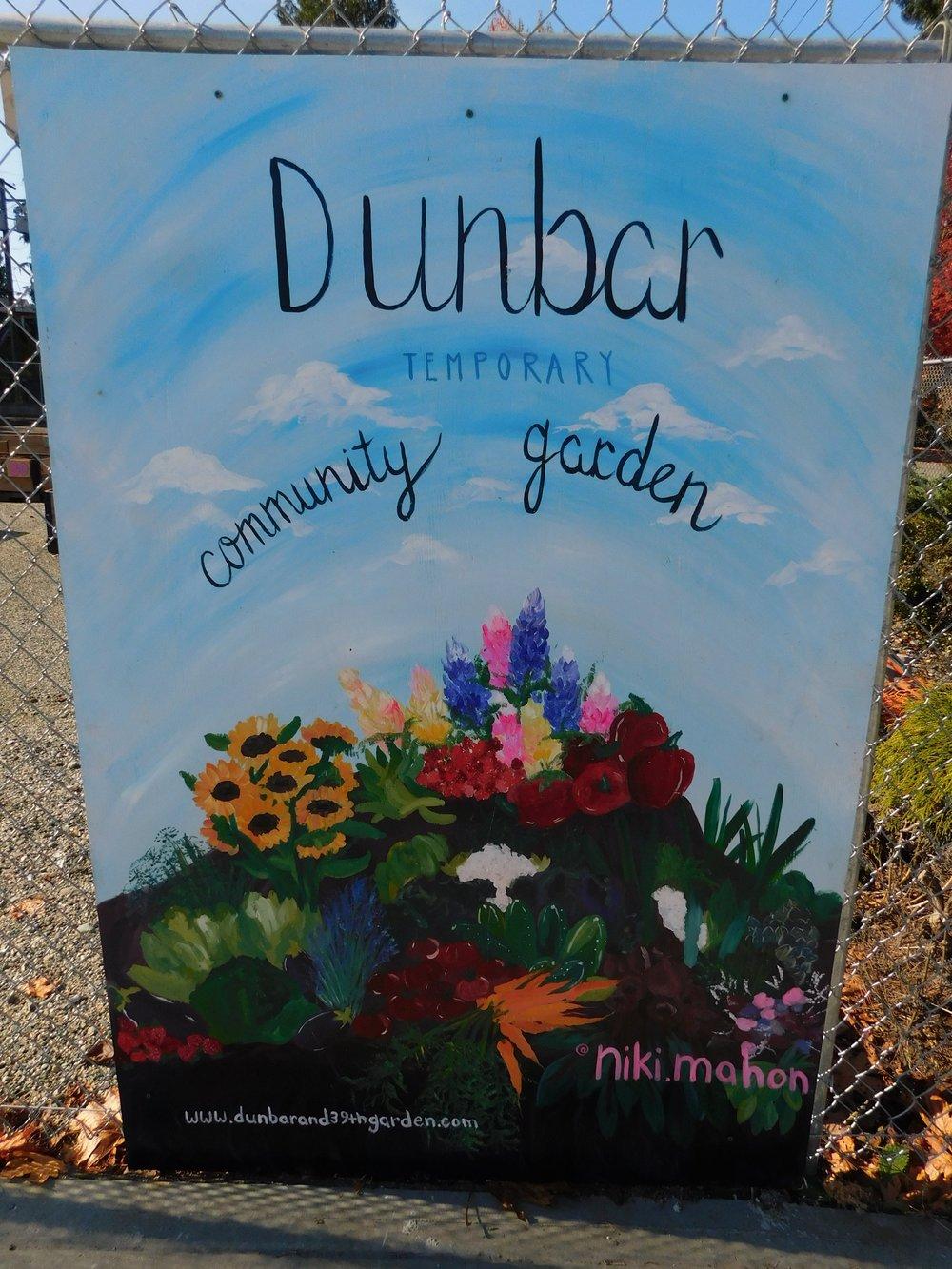 Dunbar_40th_Vancouver_Community_Garden_Builders-0018.JPG