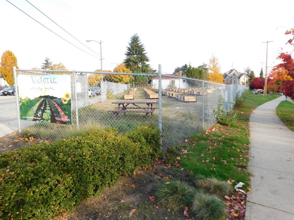 Victoria_Broadway_Vancouver_Community_Garden_Builders-0017.JPG
