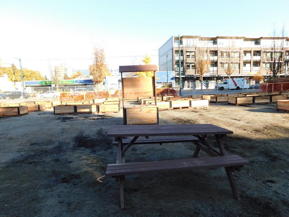 Broadway_Alma_Vancouver_Community_Garden_Builders-0004.JPG