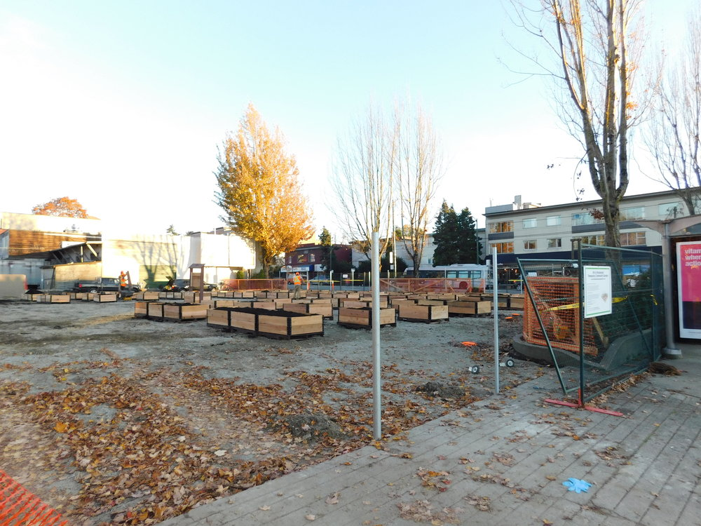 4th_Macdonald_Vancouver_Community_Garden_Builders-0018.JPG