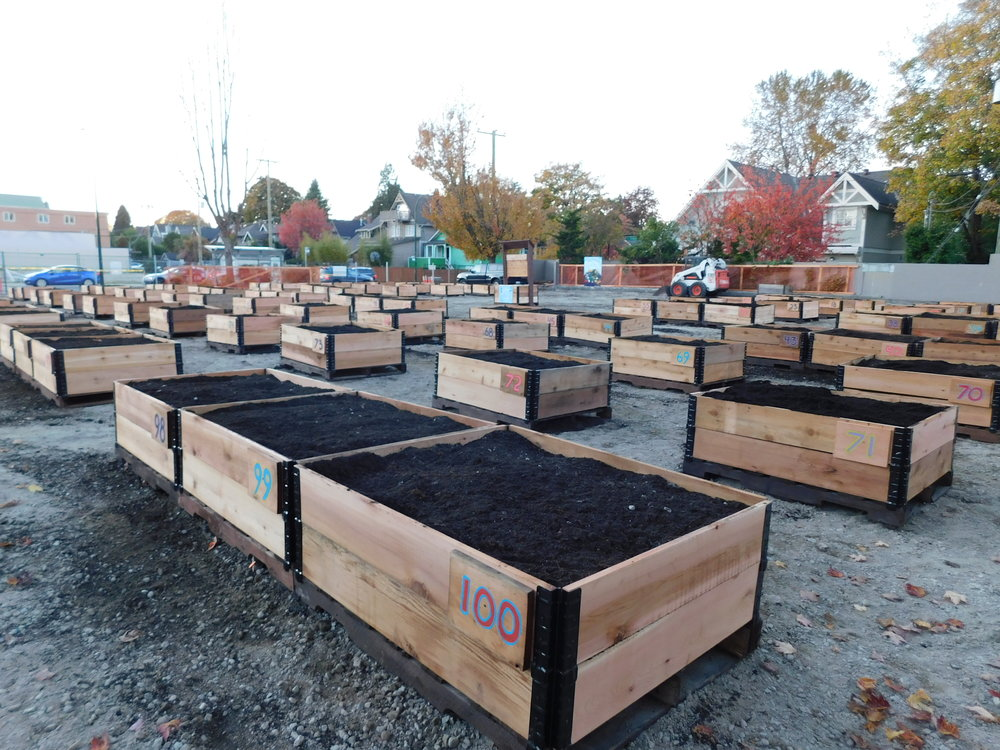 4th_Macdonald_Vancouver_Community_Garden_Builders-0027.JPG