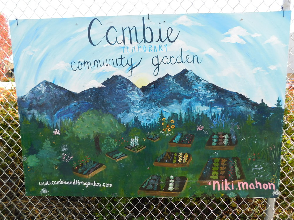Cambie & 16th     Garden Blog & Updates