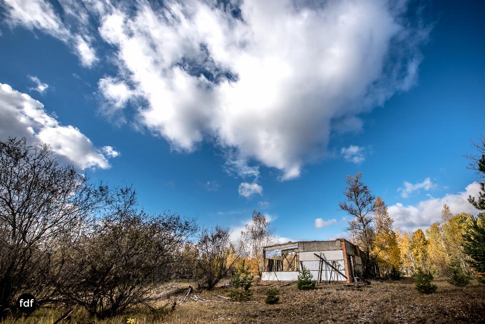 Tschernobyl-Chernobyl-Prypjat-Urbex-Lost-Place-Kolchose-13.jpg