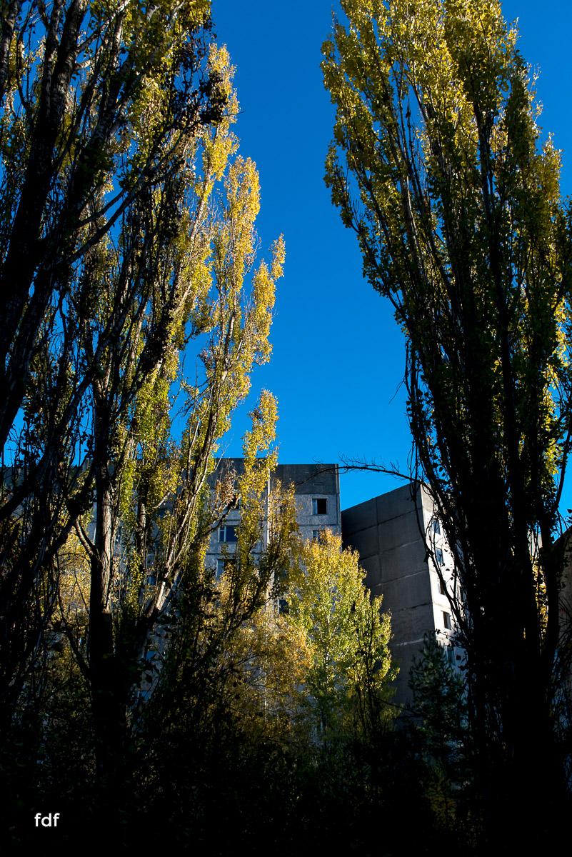 Tschernobyl-Chernobyl-Prypjat-Urbex-Lost-Place-Klavierhaus-Kindergarten-24.jpg