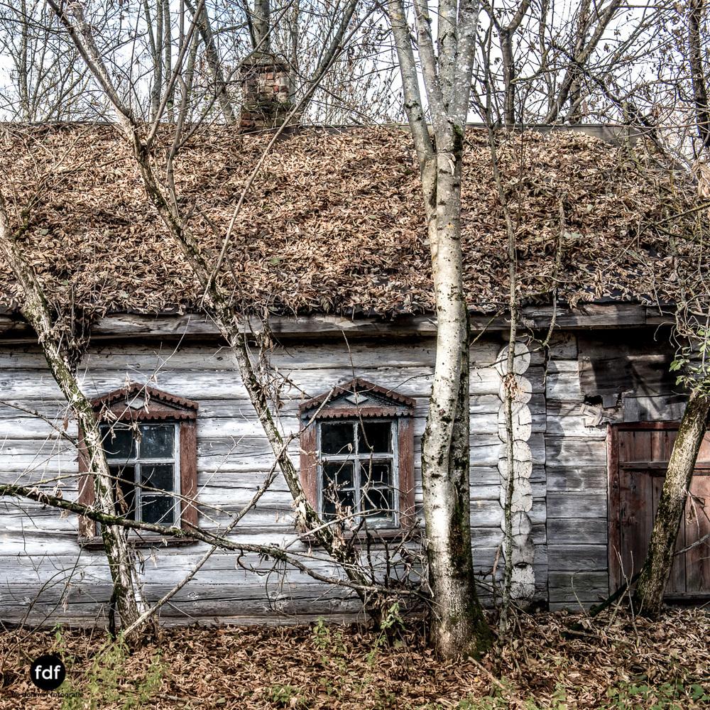 Tschernobyl-Chernobyl-Prypjat-Urbex-Lost-Place-Paryshev-Krasny-13.jpg