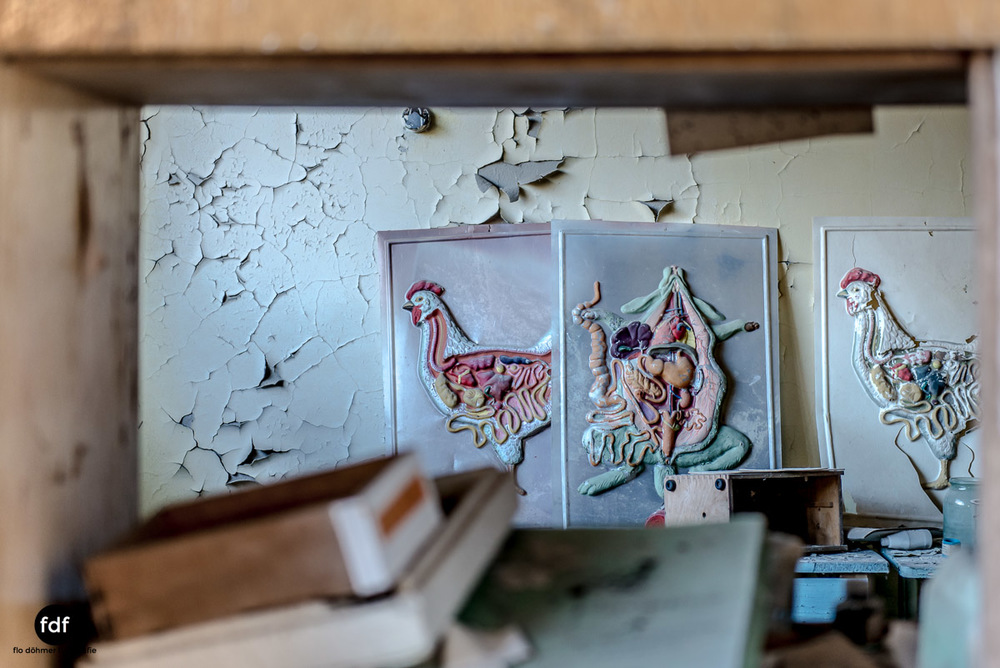 Tschernobyl-Chernobyl-Prypjat-Urbex-Lost-Place-Mittelschule-12.jpg