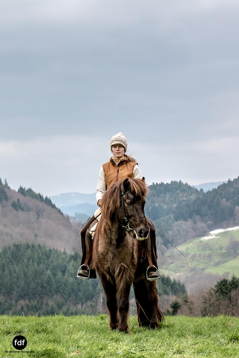 Der Ausritt-Schwarzwald-Isländer-Pferd-Portrait-13.jpg