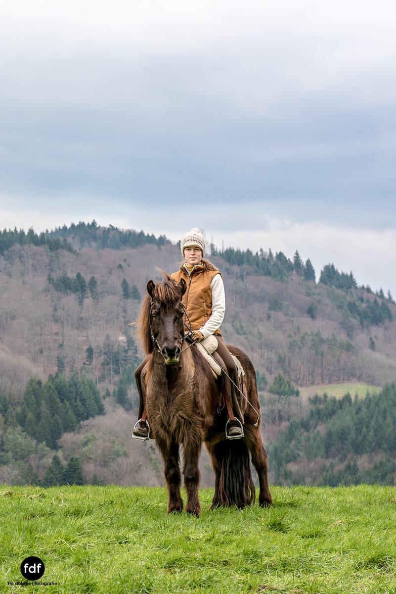 Der Ausritt-Schwarzwald-Isländer-Pferd-Portrait-14.jpg