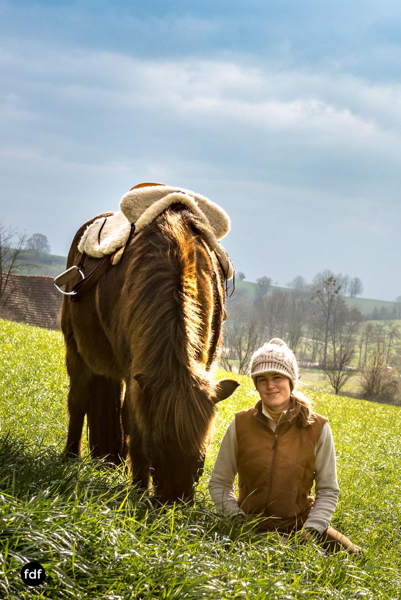 Der Ausritt-Schwarzwald-Isländer-Pferd-Portrait-24.jpg