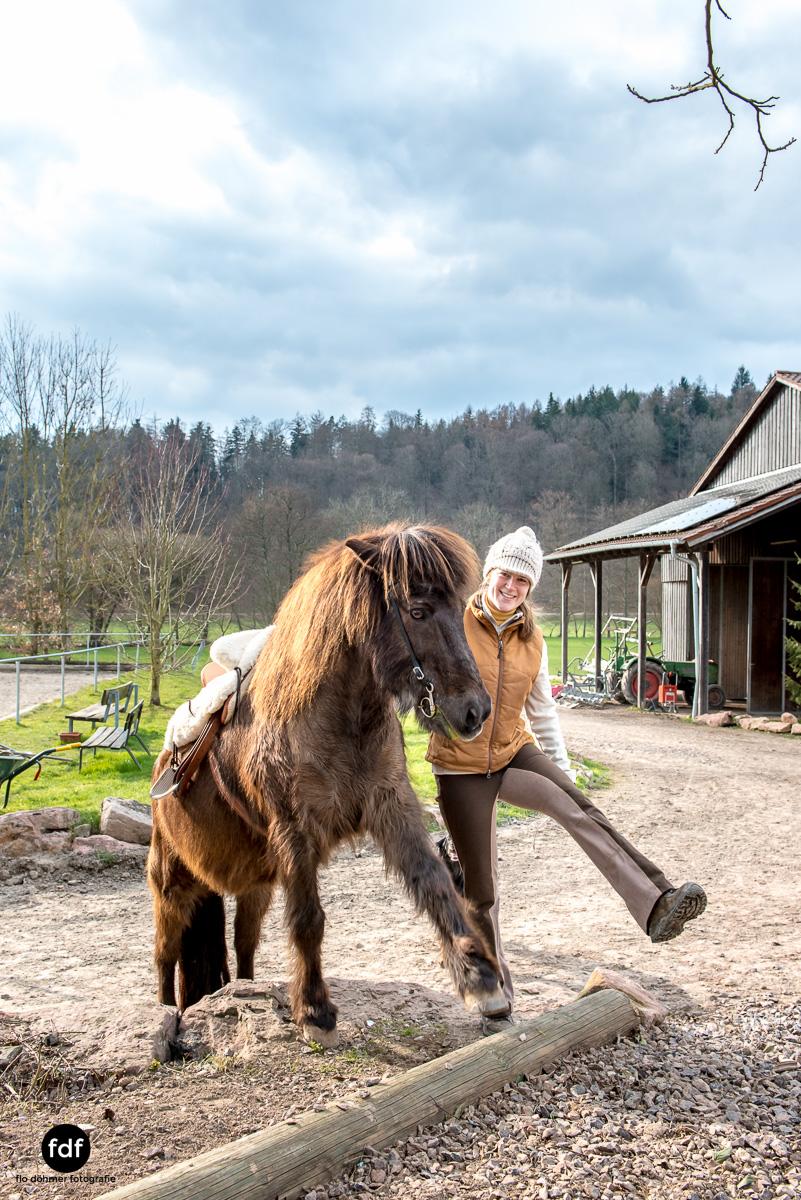 Der Ausritt-Schwarzwald-Isländer-Pferd-Portrait-25.jpg