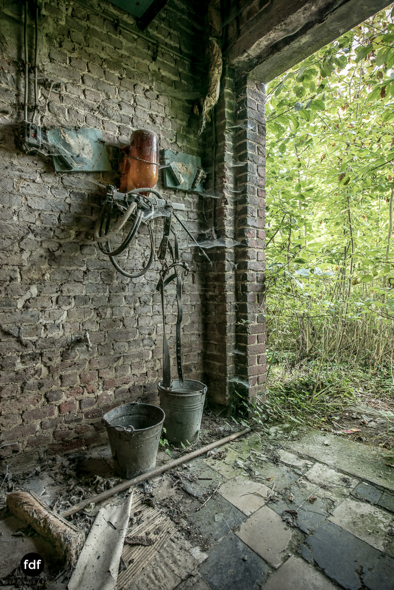 Maison-Boon-Bauernhof-Lost-Place-Belgien-Urbex-130.JPG