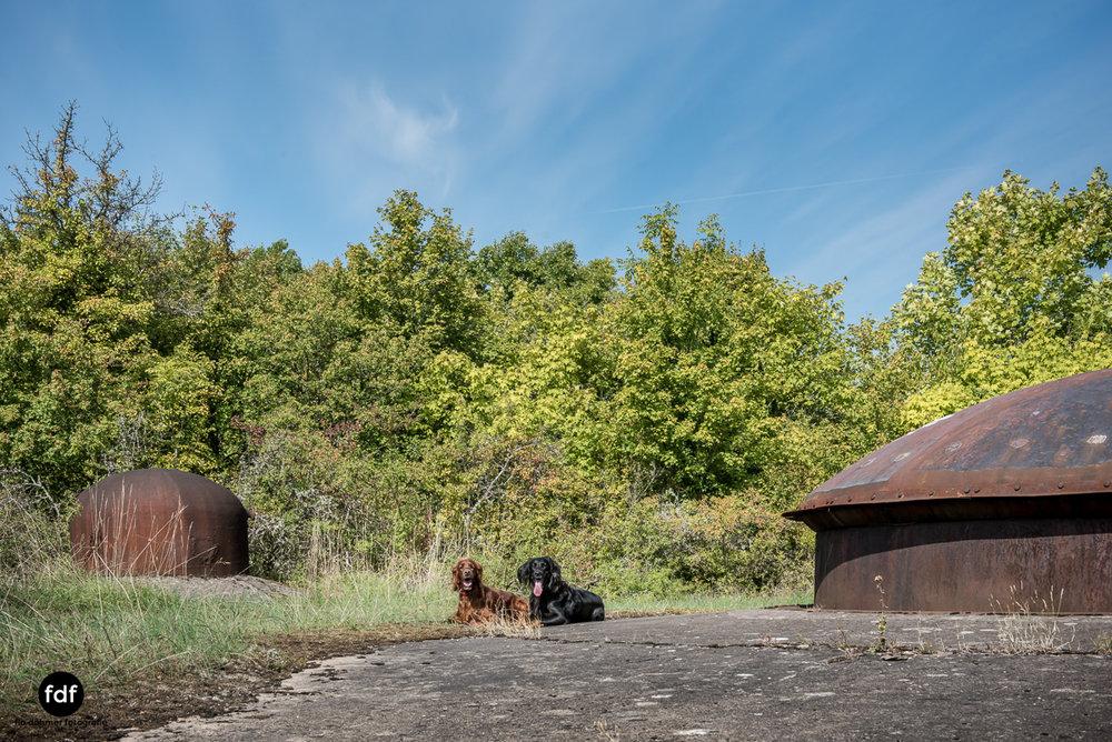Metrich-Maginotlinie-Bunker-Weltkrieg-Lost-Place-Frankreich-127.JPG