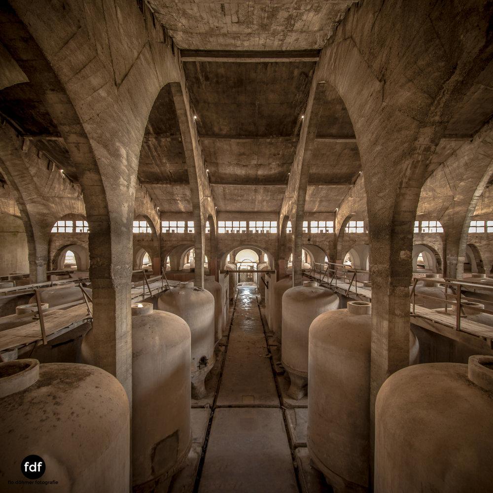 Bodega F Winzer Wein Spanien Lost Place-54.JPG