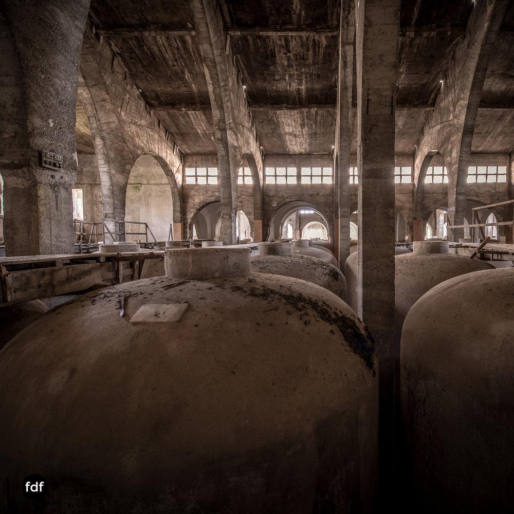 Bodega F Winzer Wein Spanien Lost Place-72.JPG