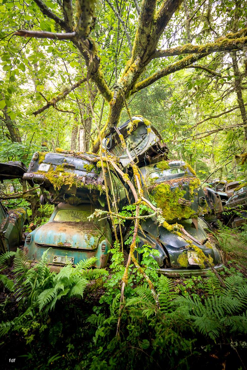 Autofriedhof Bastnäs-Norway-Lost Place-39.JPG