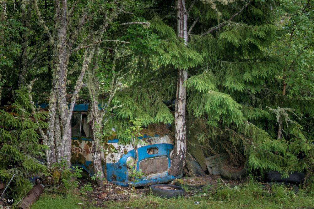 Autofriedhof Bastnäs-Norway-Lost Place-218.JPG
