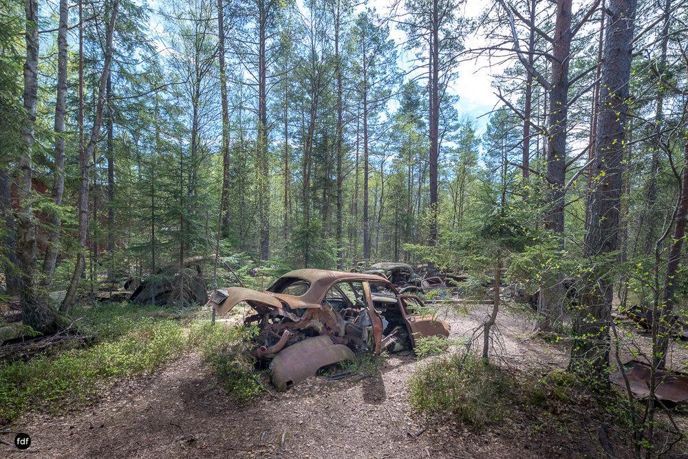Forgotten Cars-Autofriedhof-Schrott-Lost Place-Schweden-13.JPG
