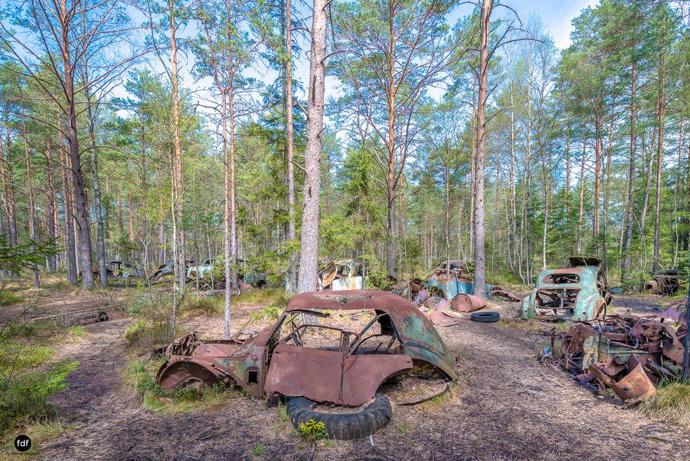Forgotten Cars-Autofriedhof-Schrott-Lost Place-Schweden-32.JPG