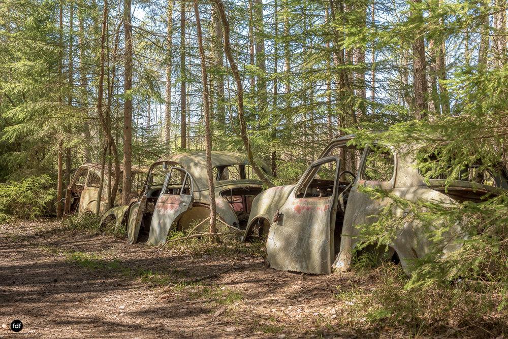 Forgotten Cars-Autofriedhof-Schrott-Lost Place-Schweden-60.JPG