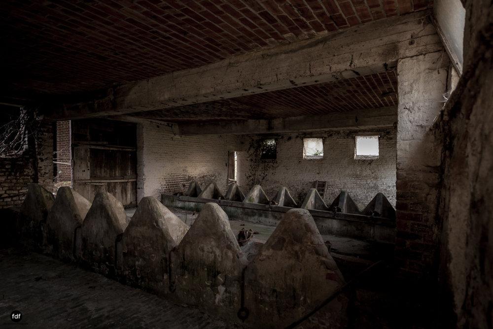 Farm Tapioca-Landwirtschaft-Lost Place-Belgien-25.JPG