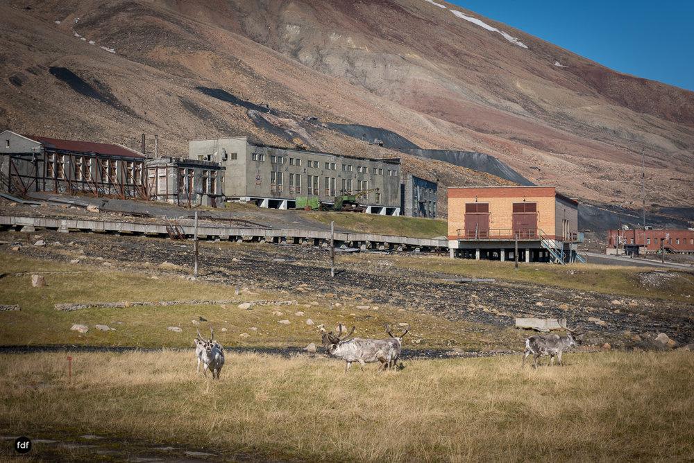 Pyramiden-Norwegen-Spitzbergen-Svalbard-Lost Place--860.JPG