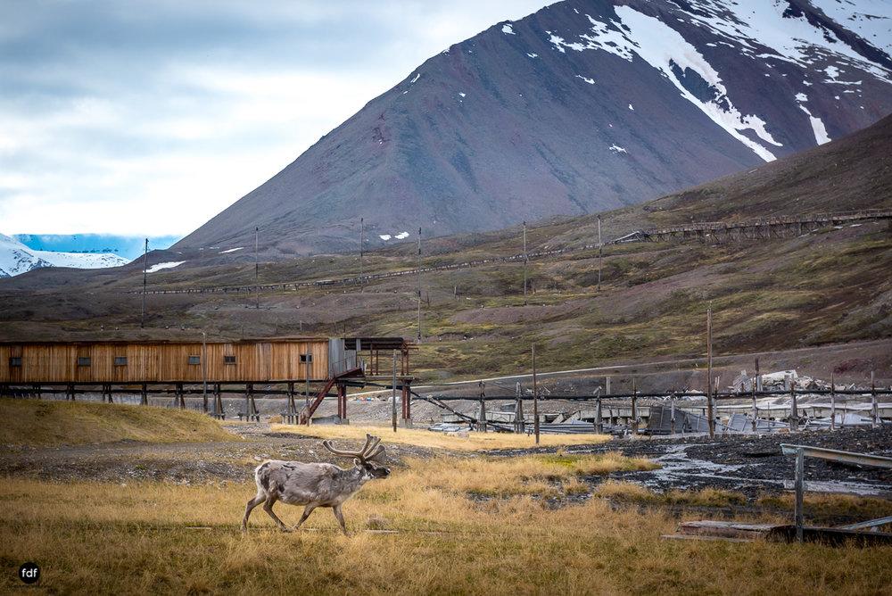 Pyramiden-Norwegen-Spitzbergen-Svalbard-Lost Place--273.JPG
