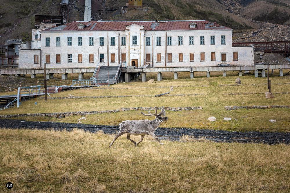 Pyramiden-Norwegen-Spitzbergen-Svalbard-Lost Place--276.JPG