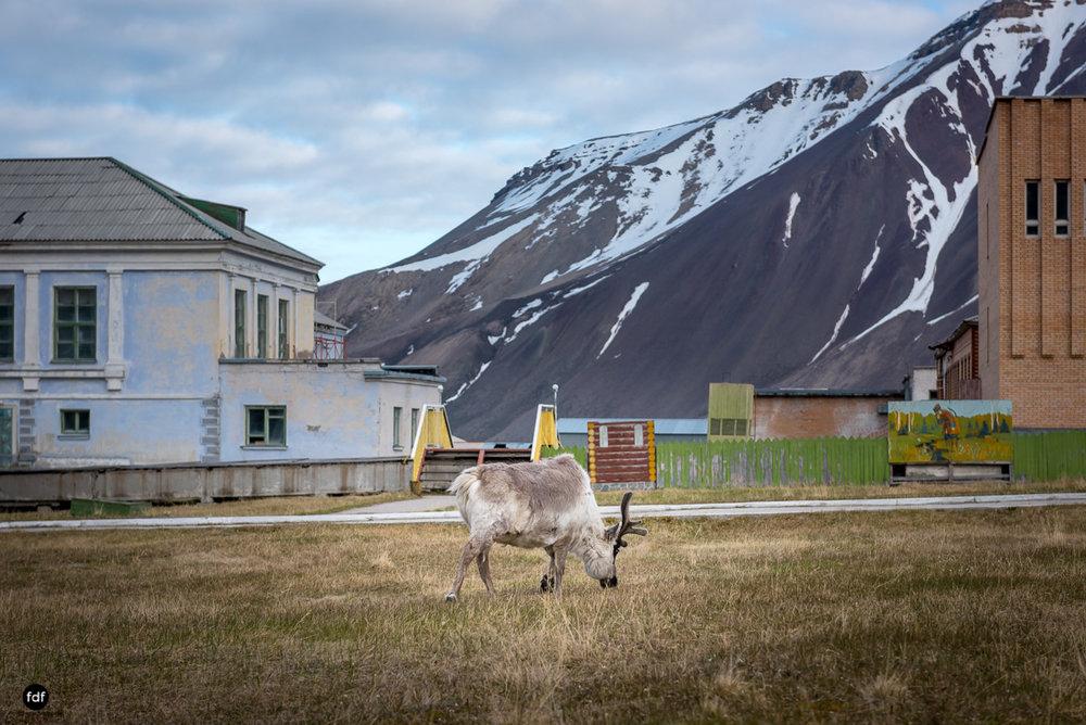 Pyramiden-Norwegen-Spitzbergen-Svalbard-Lost Place--500.JPG