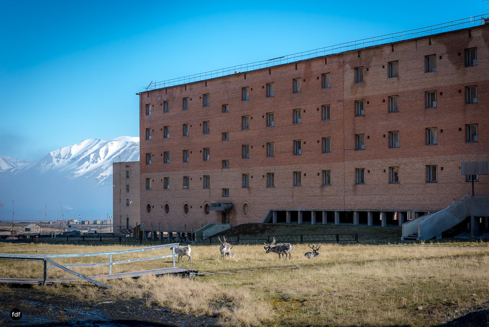 Pyramiden-Norwegen-Spitzbergen-Svalbard-Lost Place--857.JPG