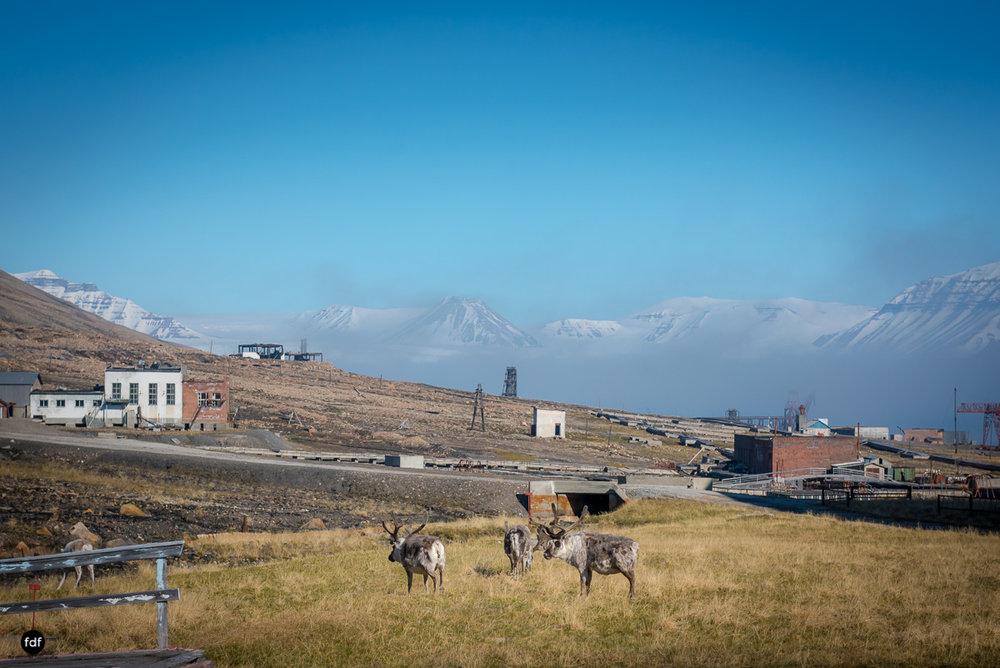 Pyramiden-Norwegen-Spitzbergen-Svalbard-Lost Place--859.JPG
