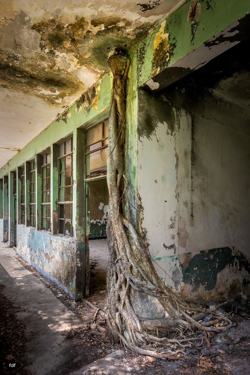 Tat Tak School-Schule-Haunted-Hong Kong-Lost Place-26.JPG
