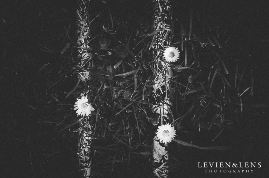 flowers ground 365 Project 2015 {Auckland-Hamilton lifestyle photographer}