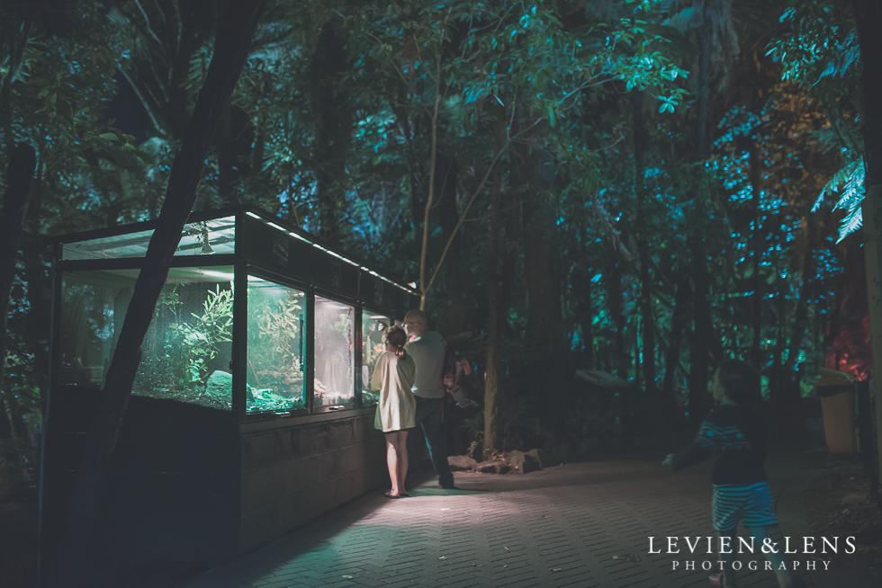 night time Rainbow Spring Family fun {Rotorua wedding-engagement photographer}