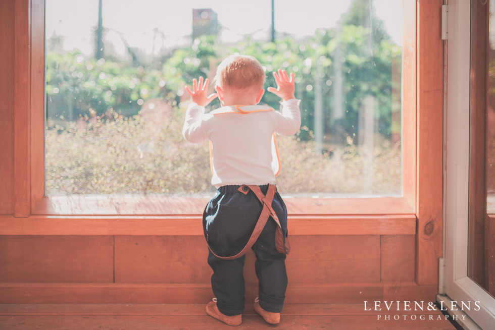 baby boy standing at window Butterfly Creek Minions birthday party {Auckland NZ event photographer} Nazar 1 year old