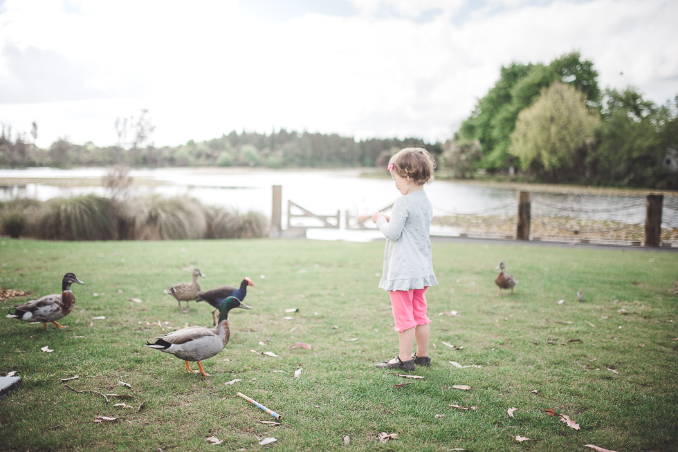 girl at lake - My personal moments in 365 Project - November 2016 {NZ wedding photographer}