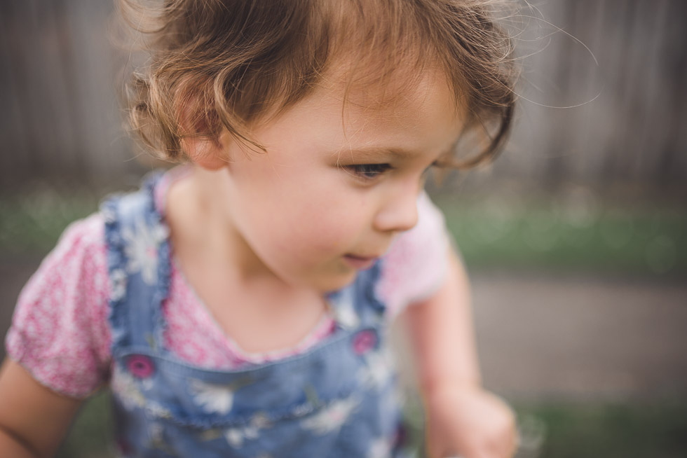 dirl - My personal moments in 365 Project - November 2016 {NZ family photographer}