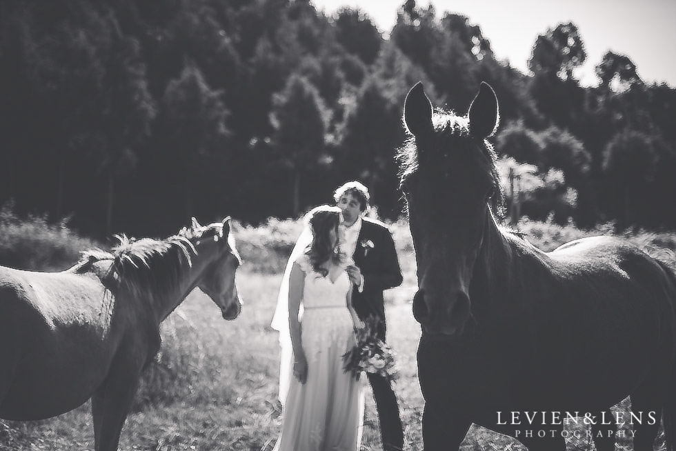 bride groom with horses {Auckland wedding photographer}