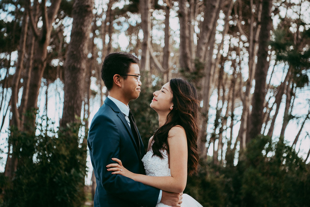 New Zealand pre-wedding engagement photographer | Auckland couples photography