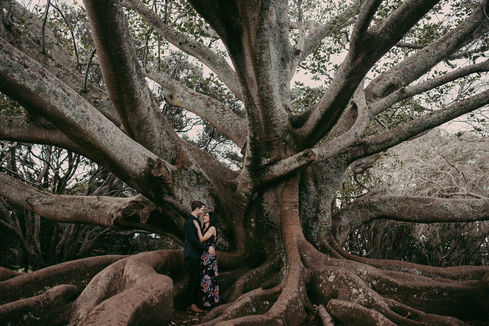 Auckland Domain engagement session {New Zealand wedding photographer}