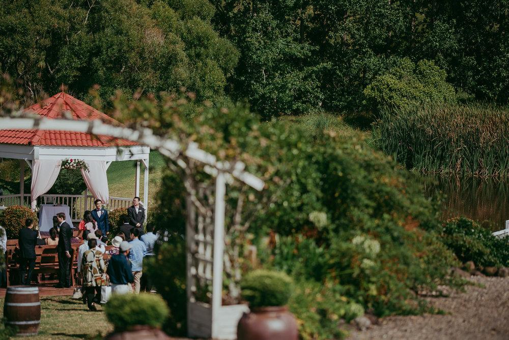 Gracehill Vineyard Estate {Auckland wedding photographers}