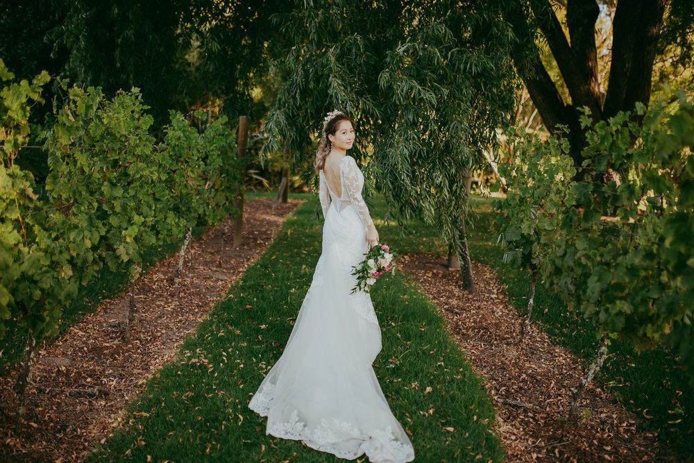 Auckland top wedding photographers
