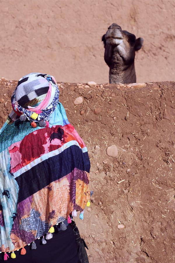 Morocco57.jpg